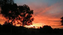 Picture: Wiluna Sunset